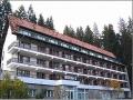 Hotel Timis