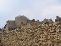 Ruinele Cetatetii