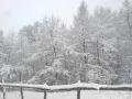 Iarna la Bratilesti