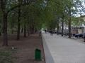 Strada Puschin