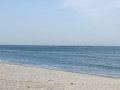 Marea Neagra la Mamaia