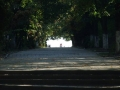 Parc Calafat