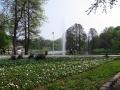 Imagini Parcul Craiova | Fotografii Orasul Craiova