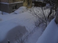 Iarna la Alexandria