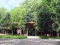 Parcul Buzias